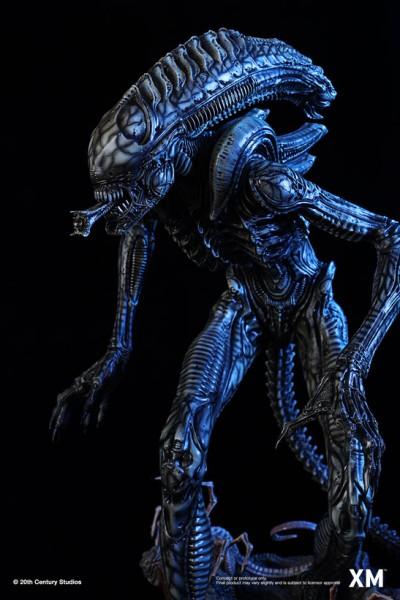 Alien Hive-Warrior - Black Variant